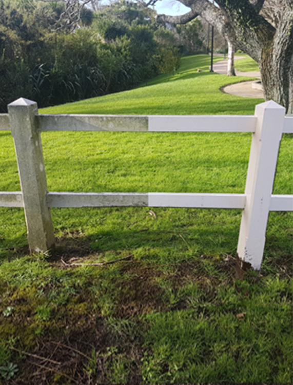 Fence Cleaning Before & After