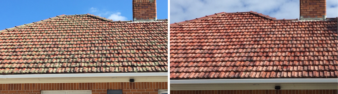 Roof Treatment Before & After in North Shore